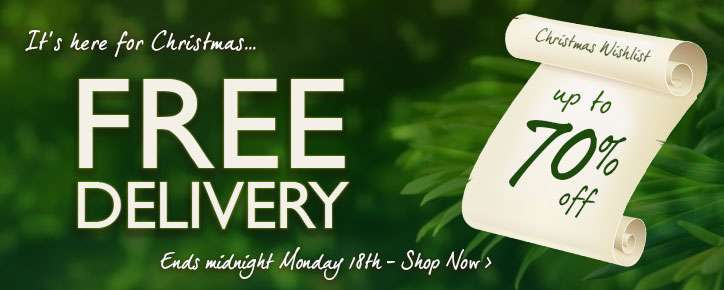 Free Delivery weekend November 2013