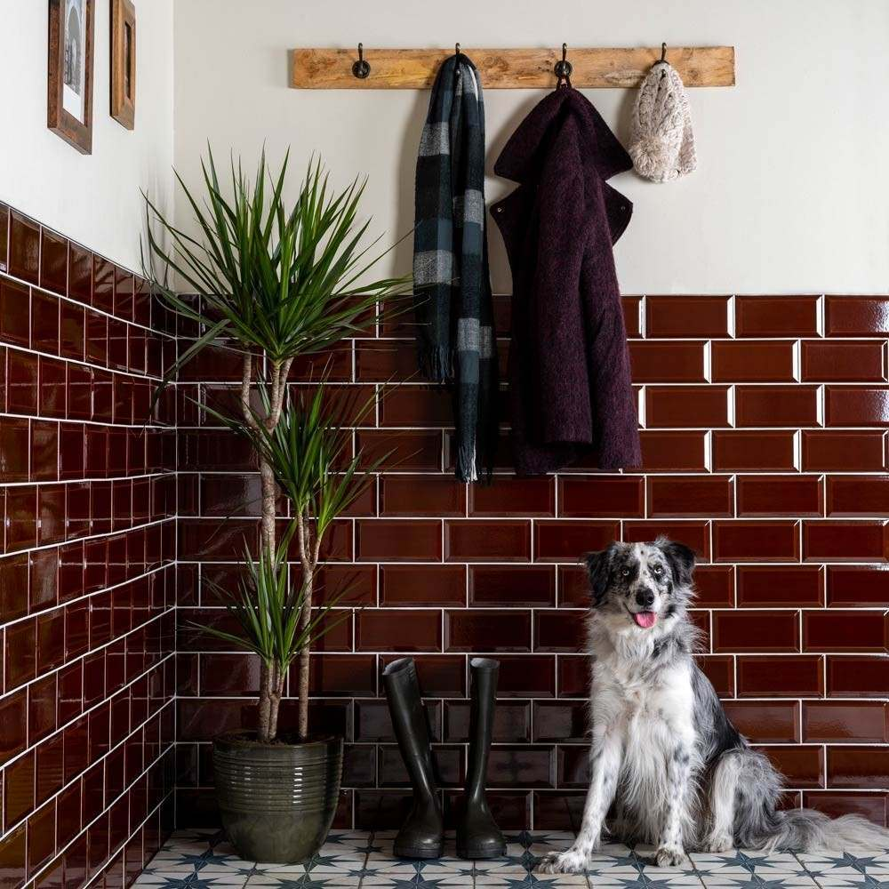 red victorian metro tiles on a wall with a dog and wellies